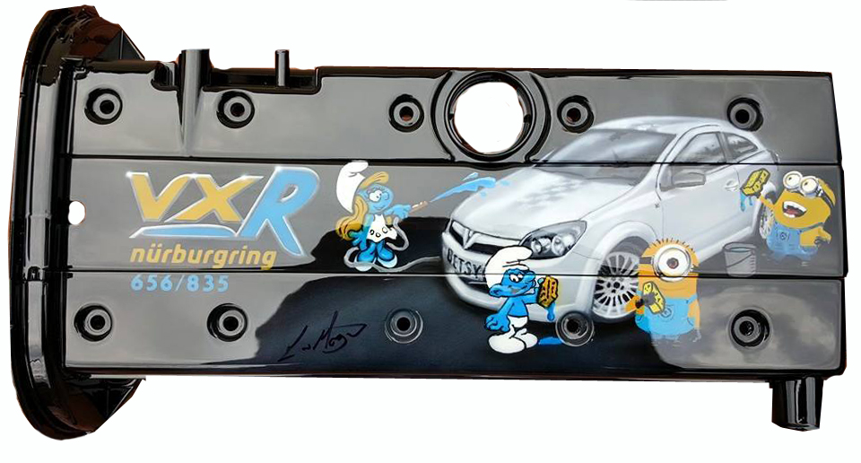 Smurf and Minion Car Wash Cover